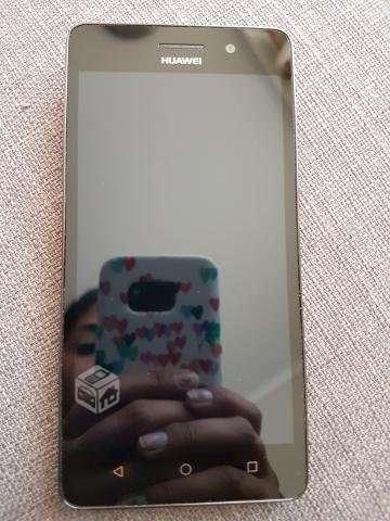 Huawei G Play mini, Región Metropolitana